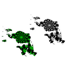 west papua subdivisions indonesia provinces of vector image