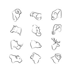 wild animals heads icons on white background vector image