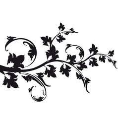 decorative floral branch vector image