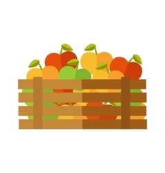 Fresh Apples at the Market vector image vector image