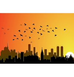 city background with flying birds vector image vector image