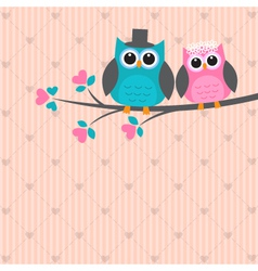 Two cute owls in love vector image vector image