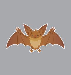 Bat animal of bat-eared brown vector