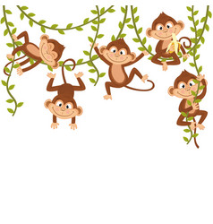 Monkey on vine vector