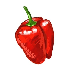 Red pepper hand drawn vector