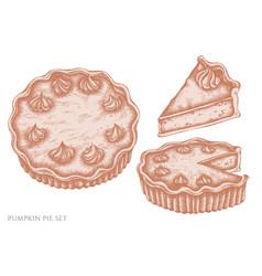 Set hand drawn pastel pumpkin pie vector