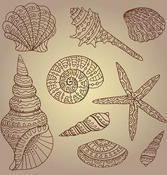 Set of decorative seashells vector