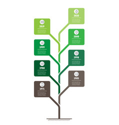 Vertical timeline infographics tree of vector
