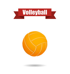 volleyball ball with shadow vector image