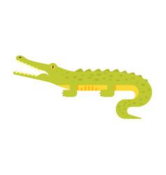 flat style of crocodile vector image