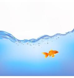 Goldfish In Water vector image