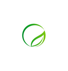 round abstract green leaf organic logo vector image