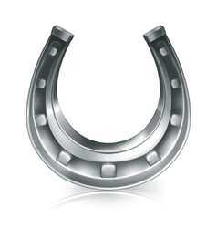 Lucky horseshoe vector image vector image