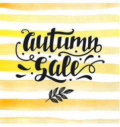 autumn sale lettering modern calligraphy vector image