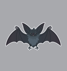 Bat animal of bat-eared grey vector