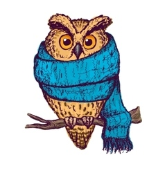 Colorful peach owl in blue scarf vector