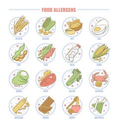 food allergen set collection gluten nut fish vector image