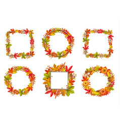 seasonal set fall frame vector image