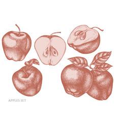 Set hand drawn pastel apples vector
