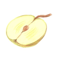 Sketch half of green apple drawn by colored vector image
