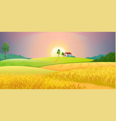 Wheat fields village farm landscape with green vector