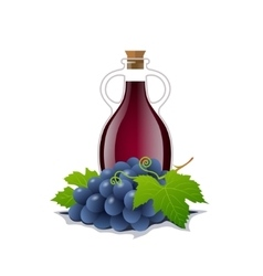 Wine bottle with a racemation of grapes vector image