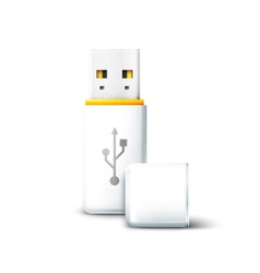 USB Flash Drive vector image vector image