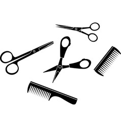 tools of hairdresser vector image vector image