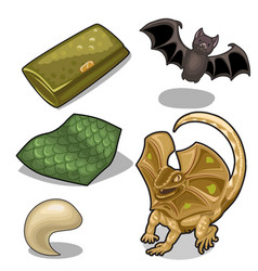 figure of frill-neck lizard theme and bat vector image vector image