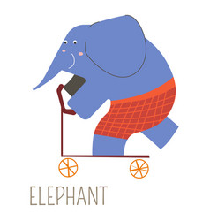 Cheerful elephant in red shorts on kick scooter vector