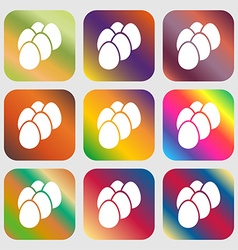 eggs icon sign Nine buttons with bright gradients vector image