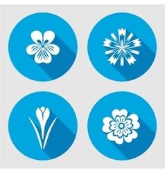 Flower set Primula viola blue poppy Crocus vector