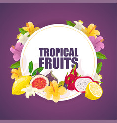 tropical fruits banner poster vector image