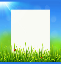 White paper sheet on sunny summer grass background vector