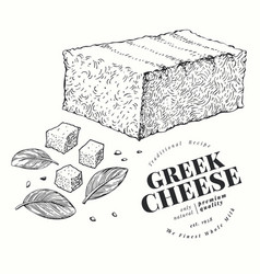 greek cheese hand drawn dairy engraved style vector image