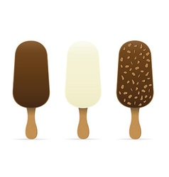 Ice cream with chocolate glaze 04 vector