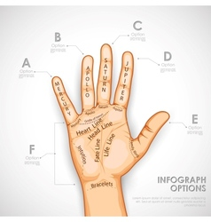 Palmistry Infographics vector