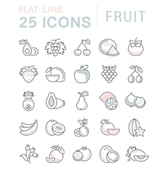 Set Flat Line Icons Fruit vector image