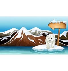 A polar bear above the iceberg with a signboard vector