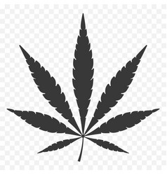 Cannabis leaf hem icon natural hemp textile vector