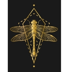 Golden dragonfly and geometric elements vector