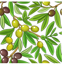 olive fruits pattern on white background vector image