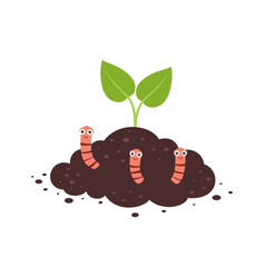 plant growth from soil with worms vector image