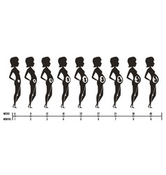 Pregnancy stages silhouettes of happy mom with vector