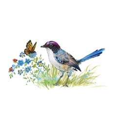 Watercolor colorful Bird and butterfly with grass vector image
