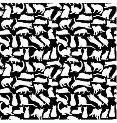 background with cats collection silhouette vector image vector image