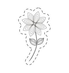 Chrysantemum flower decoration cut line vector