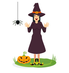 witch and spider vector image vector image