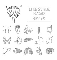 human organs set icons in outline style big vector image vector image