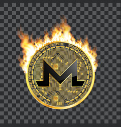 Crypto currency bitcoin golden symbol on fire vector